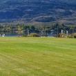 Lawn behind 143